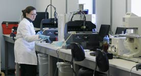 Photo shows a woman in a lab technician coat in the IdentiGEN lab in Kansas, to illustrate an article on education policy regarding two-year degrees.