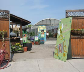 Urban agriculture projects on once-vacant land bring hope -- and food -- to communities. Image shows urban garden/market
