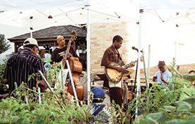 community gardens: A Jazz in the Garden session at Clayton Williams Community Garden in Harlem.