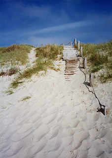 sandy steps leading up the dunes and off the beach