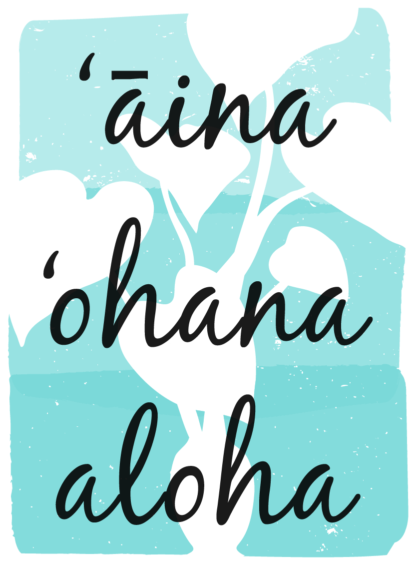Image result for aina hawaii