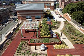 Aerial view of Serviam Gardens in the Bronx, New York City, accompanying article about innovative community development funds