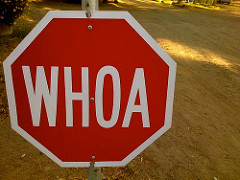 "Red stop sign that reads ""Whoa"" instead of ""Stop"""