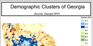 A graphic showing the demographic clusters of Georgia.