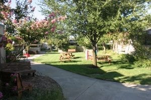 A play and picnic area at the Dos Pinos cooperative in California.