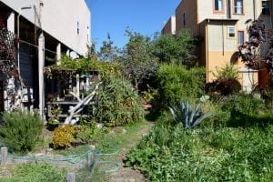 A local farm founded as a community garden in East Oakland, California.