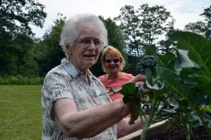 Two white women tend to a community garden in Maine.