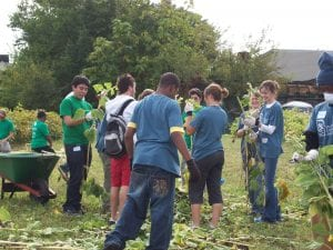 Youth prep, plant, and maintain sunflowers in a once vacant lot in Pittsburgh.