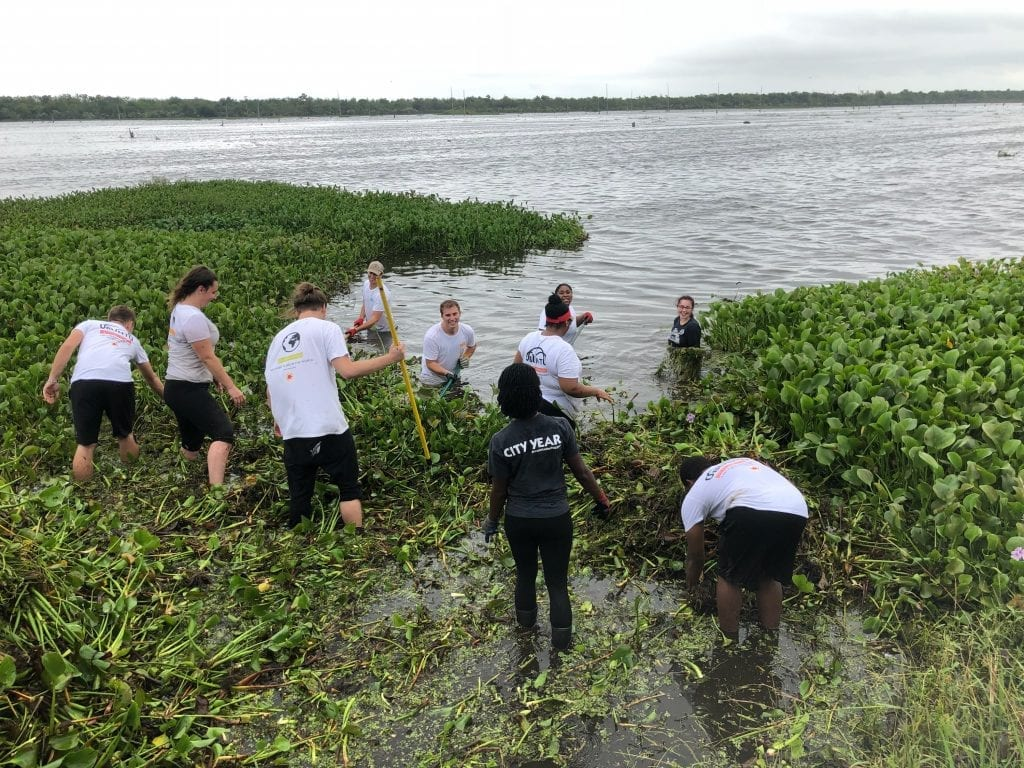 Several groups gather at the Bayou Bienvenue to remove water hyacinths from the bayou. Joint efforts like this help build neighborhood resilience in New Orleans.