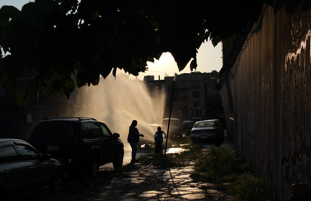 summer hydrant water bronx