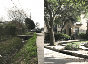 segregation effects_side-by-side drainage ditches