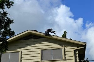 home repair: a man repairs the roof of a house
